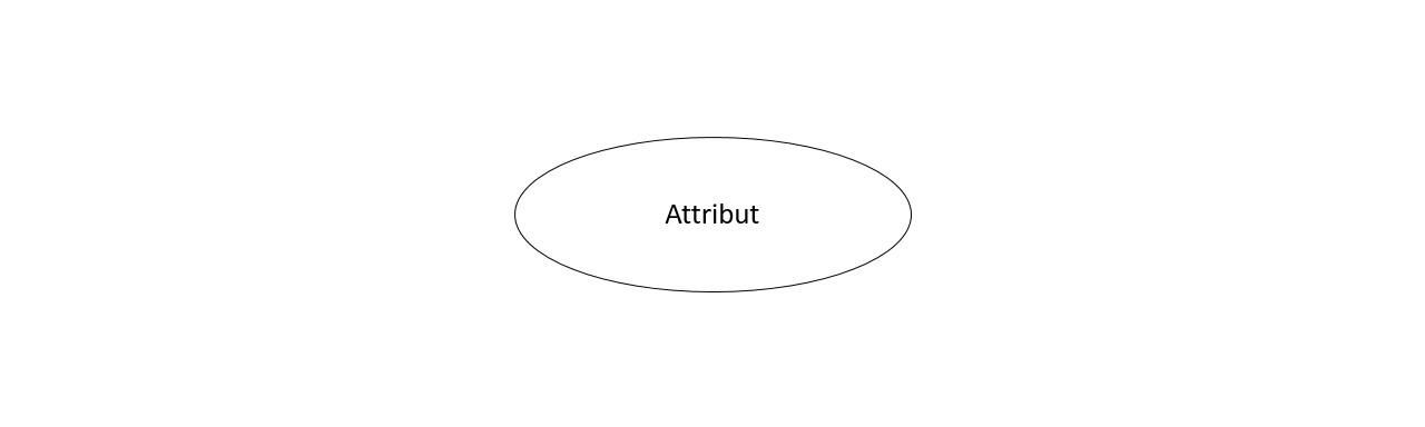 ER-Diagram Attribut | Datenbank Lexikon